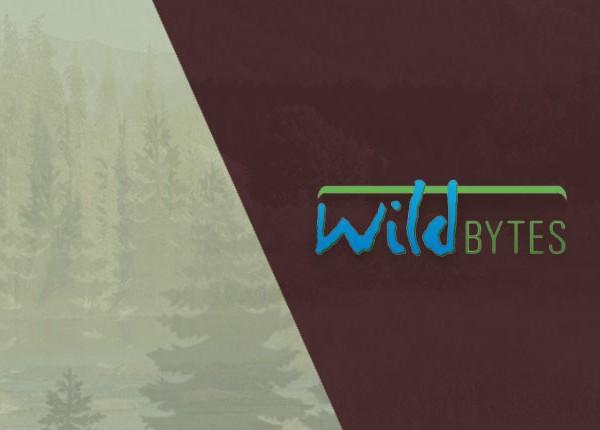 Wild Bytes