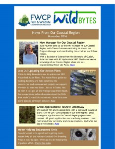 Coastal WildBytes Nov 2016_Page_1